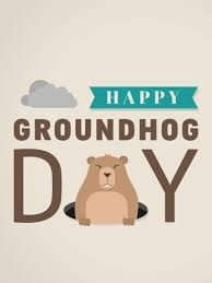 groundhog day card birthday greeting cards by davia
