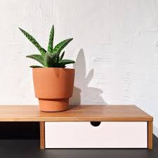 indoor plants that will help cool your home 9homes