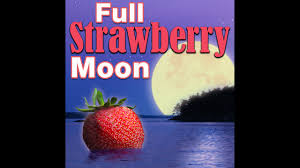 what is a strawberry moon see the full strawberry moon story fox 13 ta bay