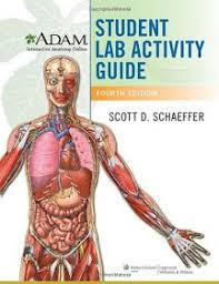 Anatomy And Physiology With Lab Online 105 Best A U0026p Lab Study Material Images On Pinterest Nursing