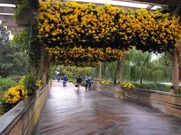 Botanic Garden Glencoe Glencoe U S Japanese Gardens