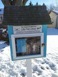 the trouble with little free libraries