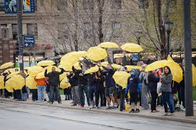 yellow umbrellas to shelter from the storm osocio