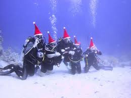 bali scuba diving in safety quality of your underwater experience