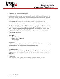 chromosomes worksheet
