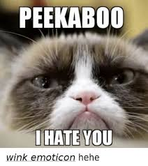 Wink Face Meme - peekaboo i hate you wink emoticon hehe grumpy cat meme on me me