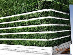 vertical garden systems u2013 cicaki