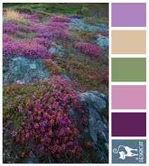 89 best dixie images on pinterest colors color palettes and