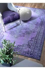 Fuzzy Purple Rug Rugs Usa Winsdor Overdyed Grove Purple Rug Rugs Usa Labor Day