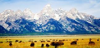 Wyoming Traveling Sites images Wyoming dude ranch and guest ranch vacations wdra jpg