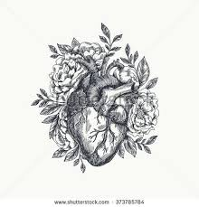 best 25 anatomical tattoos ideas on pinterest human heart