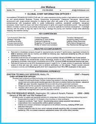 resume reference page sample ciso resume resume cv cover letter ciso resume svp resume sample senior vice president resume sample coo resume sample chief operating outstanding