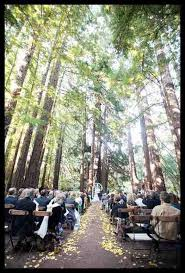wedding venues in northern california forest wedding venues northern california 2018 weddings
