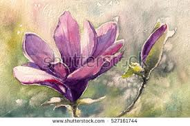 painting greeting cards in watercolor magnolia watercolor painting illustration greeting card stock
