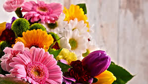 mothers day flowers 20 enjoy 20 1 800 flowers