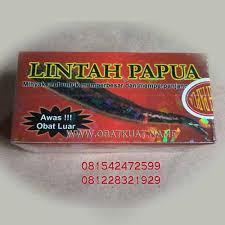 obat kuat murah oil lintah papua