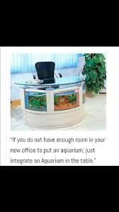 232 best aquarium life images on pinterest aquarium ideas