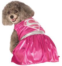 halloween costumes superwoman really cute halloween costumes for dogs