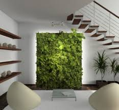 Below Stairs Design Green Wall Systems Design Pot Plants Wonderful Green Wall Systems