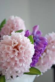 303 best heavenly hyacinths images on pinterest beautiful