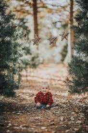 2nd annual christmas tree farm minis 2017