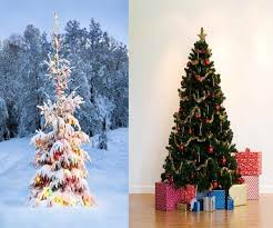 Evergleam Aluminum Christmas Tree Vintage by Retro Aluminum Christmas Tree Christmas Lights Decoration