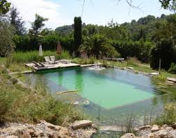 Natural Pools by Natural Swimming Pool Designs 1000 Images About Natural Pools On
