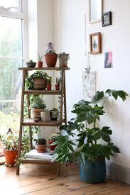 plant stand display ladder shelves shelf for plants bestdeas on