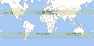 africa map climate zones map of the world s mediterranean climate zones 820x400 rebrn