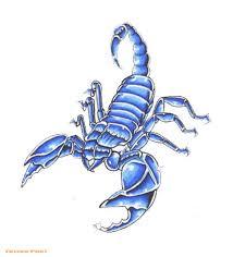 tattoopilot com scorpion designs tattoos