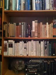 ya books with animal best friends crunchingsandmunchings