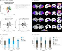 distinct subtypes of behavioral variant frontotemporal dementia