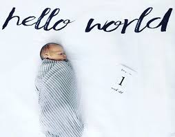 7 best hello world swaddle images on pinterest muslin swaddle