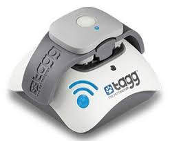 Gadgets For Pets 8 Cool Gadgets For Pets Techlicious