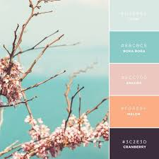 color or colour build your brand 20 unique and memorable color palettes to inspire