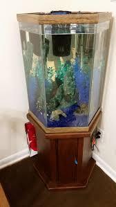 Best Hoods Fish Tank Gallon Hexagon Aquarium The Best Shocking Hood Images