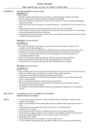 property accountant resume sles velvet jobs