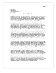 Hero Essay Examples Reflective Essay Examples Sample