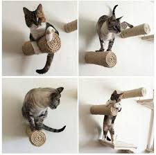 use a real tree as a stylish cat scratching and climbing post