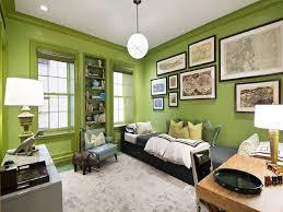 Green Boy Bedroom Ideas Gray Flannel Shams Design Ideas