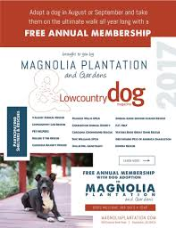 what u0027s new at magnolia plantation and gardens charleston sc
