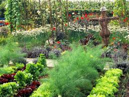 Kitchen Garden Designs Happy May Weekend Beautiful Vegetable Garden Home Design