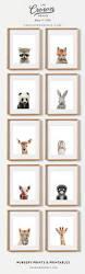 Winnie The Pooh Wall Decals For Nursery by Best 25 Baby Animal Nursery Ideas On Pinterest Animal Nursery