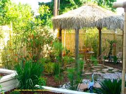 tropical backyard landscaping ideas home design elements tropical
