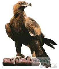 wedge eagle wedge tailed eagle cross stitch and stitch