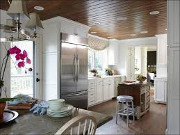 Paint Sprayer For Cabinet Doors Kitchen Can You Paint Cabinets Laminate Cabinets Cabinet Faces