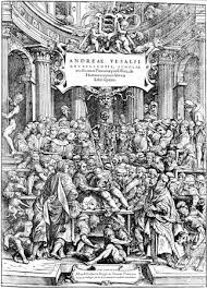 He Made Accurate Drawings Of The Human Anatomy Andreas Vesalius Belgian Physician Britannica Com