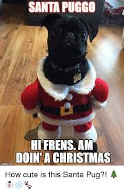 Cute Christmas Meme - santa puggo hi frens am doin a christmas how cute is this santa pug