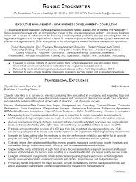 example of business resume resume sample business analyst 8 it