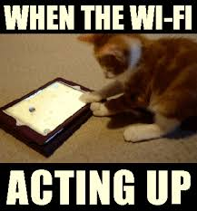 Define Memes - top wifi memes that totally define our feelings tell me nothing